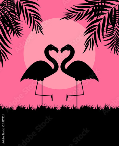 Cute Pink Flamingo Background Vector Illustration - 211537921