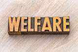 welfare - word abstract in wood type - 211556379
