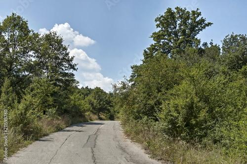 Fotobehang Zomer Magnetic landscape of green deciduous forest with asphalt road in the Sredna Gora mountain, Ihtiman, Bulgaria