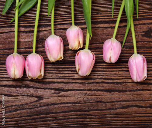 Fototapeta tulips on wooden table