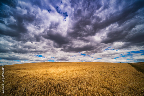 Fototapeta Landschaft mit dramatischem Himmel