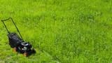 Grass cutter stands on fresh green lawn - 211627975