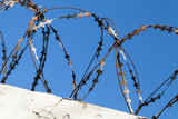 Barbed wire on top of white concrete wall - 211627979