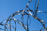 Barbed wire over blue sky background - 211627983