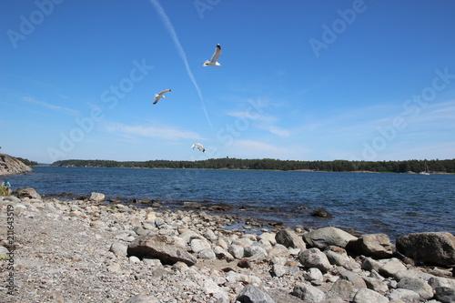Słoneczny dzień w Szwecji