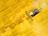 Aerial view of combine harvester. Harvest of wheat field. Industrial background on agricultural theme. Biofuel and food production from above. Agriculture and environment in European Union.  - 211659317
