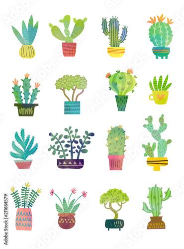 Fototapeta cactus watercolor poster
