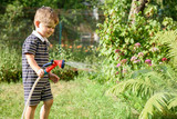 Cute little boy watering the garden with hose. - 211677709