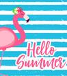 Cute Pink Flamingo Summer Background Vector Illustration