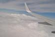 Niebo  i skrzydło samolotu - 211702762