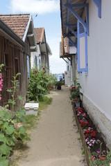 ruelle du village © helenedevun
