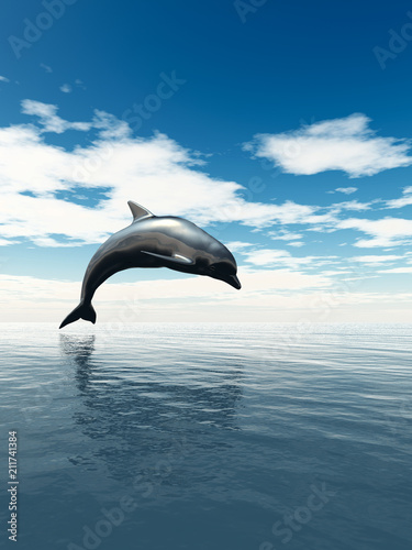 Fototapeta dolphin jumping out of the water