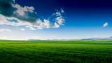 Green fields blue sky