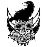 Vector illustration with a human skull, raven and flowers. Gothic brutal skull. For print t-shirts or book coloring. - 211757367