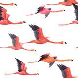 Watercolor flamingo vector pattern - 211781142
