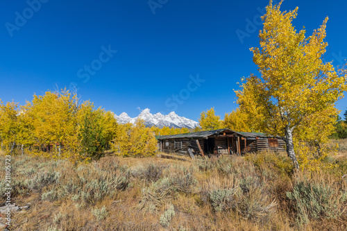 Fotobehang Honing Scenic Autumn Landscape in the Tetons