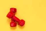 Two red womens dumbbells. Fitness concept