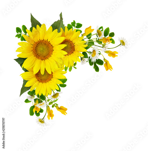 Sunflowers, daisies and acacia flowers in a corner arramgement