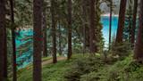 Grüner See Steiermark Hochschwabgebiet Naturjuwel Idylle Bergsee Österreich Natur Wasser Ausflug - 211881576
