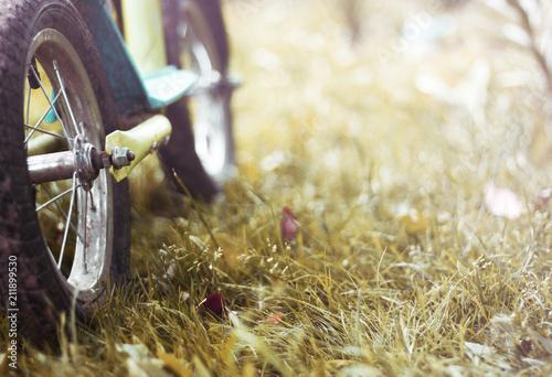 Plexiglas Fiets the balance bike is on the grass