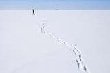 Footsteps of person walking on snowfield - 211930126