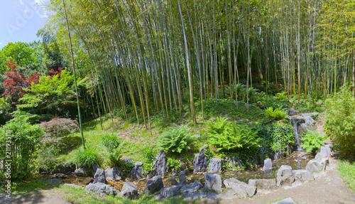 Schöner Bambuswald mit Bach im Park der Villa Carlotta am Comer See