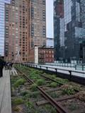 High Line - New York - 211937918