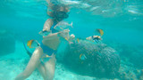 UNDERWATER: Young woman diving in the ocean feeds a school of tropical fish.