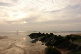 plage au crépuscule