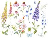 Watercolor floral set - 211957989