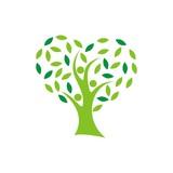 дерево - 211969945