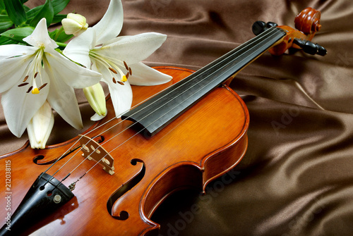 violin and lily on a silk background. close up - 212038115