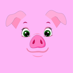 vector illustration pig © анастасия трофимова