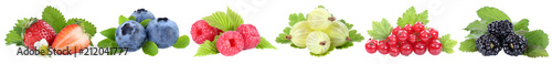 Sammlung Beeren Erdbeeren Blaubeeren Himbeeren rote Johannisbeeren Früchte in einer Reihe isoliert Freisteller freigestellt - 212041777