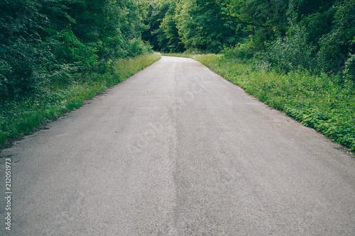 Foto Murales Empty forest road