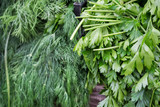 Parsley and dill for sale at local city market - 212062565