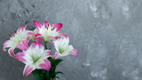 Pink white lily bouquet and grey background