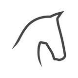 Vector image of an horse on white background - 212069714