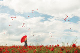 A girl with a red umbrella in a red poppy field and red petals of poppies whirling in the air.