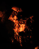 Fire flames on a black background - 212084561