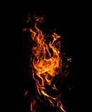 Fire flames on a black background - 212084589