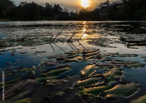 Aluminium Bergrivier Beautiful River landscape. Sunset