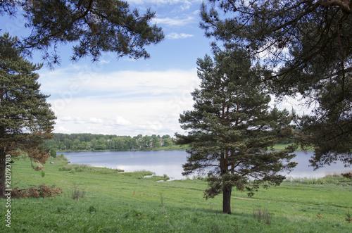 Fotobehang Olijf lake view