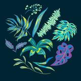Vector summer tropical leaves, decorative set - 212110793