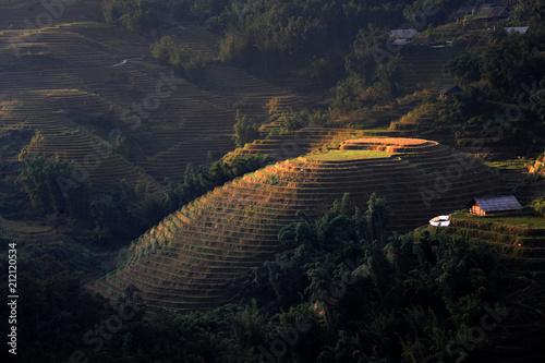 Aluminium Zwart SaPa rice terrace field in Vietnam