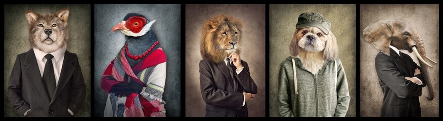 Animals in clothes. Concept graphic in vintage style. Wolf, Bird, Lion, Dog, Elephant.