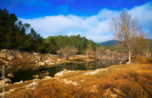 In de dag Bergrivier river with forest riverside in autumn day. Catalan Pyrenees