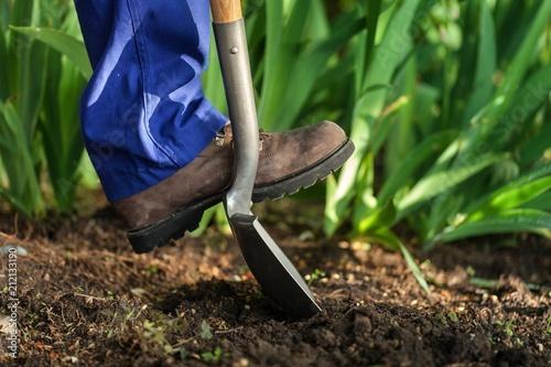 Garden. - 212133190