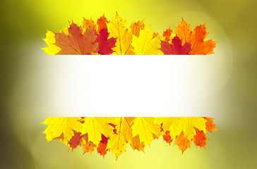 Autumn leaves decoration copy space background. © robsonphoto