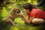 teenager girl hug puppy shepherd dog close up photo on green garden background - 212152549